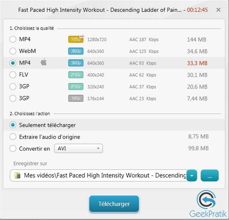 Freemake video downloader Format